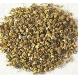 Te manzanilla dulce flor infusion comprar precio herbolariomalvarosa.com