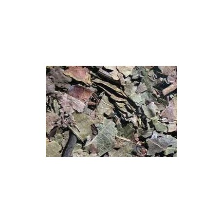 Te nogal infusion hojas secas comprar precio herbolariomalvarosa.com