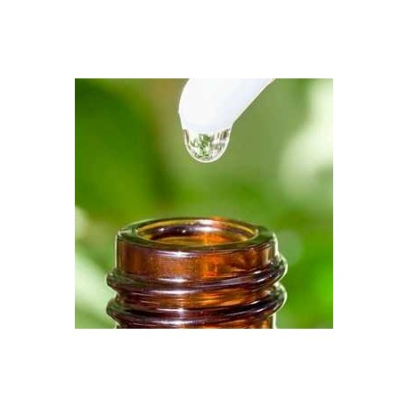 ACEITE ESENCIAL MENTA PIPERITA 100% natural puro