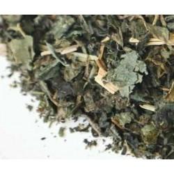 Te ortiga verde infusion comprar precio herbolariomalvarosa.com