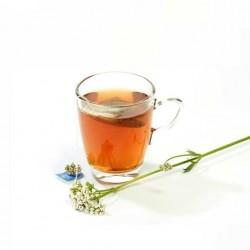 Infusion te verde en filtro soria natural comprar precio herbolariomalvarosa.com
